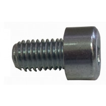 ZINC SCREW  CHC 8X10